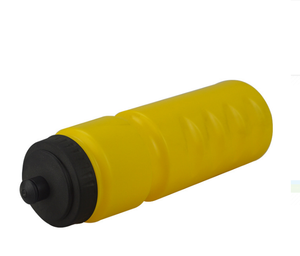 25 oz. Plastic Water Bottles With Push Cap